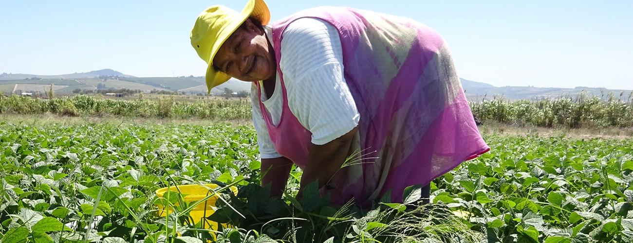 Women on Farms